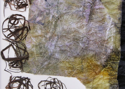 Minéral-végétal-5-collages-Carmen-Groza